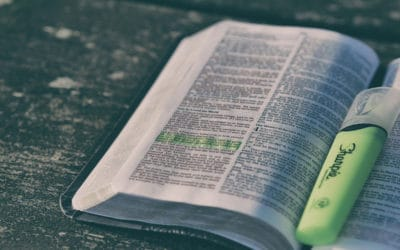 4 Ways to Dive Deeper into Scripture